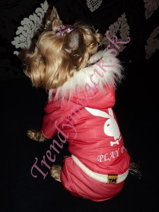 89af7b6c32e6 Zimný overal PLAY DOG - oblečenie a móda pre psov - TrendyMiláčik