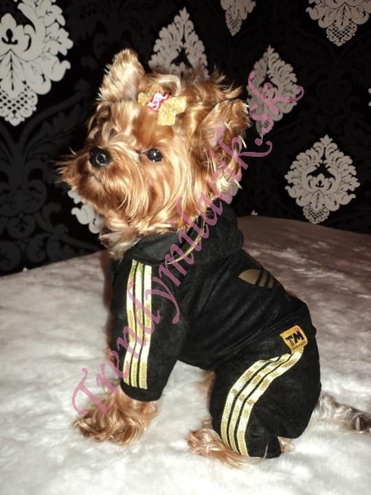 6064d4f6c3db Velúrová súprava Fuchsia - oblečenie a móda pre psov - TrendyMiláčik
